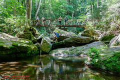 Big South Fork - May, 2015 (mikerhicks) Tags: people usa landscape geotagged outdoors unitedstates hiking tennessee blackoak hdr speck oneida nashvillehikingmeetup bigsouthforknationalriverrecreationarea sigma18250mmf3563dcmacrooshsm canoneos7dmkii