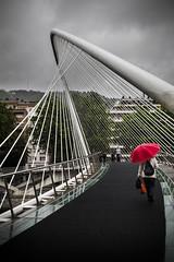 (Ghislain Roy) Tags: bilbao españa spain spanish europe gehry guggenheim museum rain city