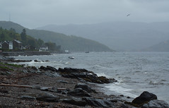 #30DaysWild - Day 1 (nancy II) Tags: storm rain outdoors scotland waves wind flamingjune wildlifetrust wildweather june2015 argyllssecretcoast 30dayswild