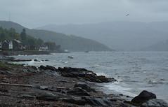 #30DaysWild - Day 1 (nancy II-brb) Tags: storm rain outdoors scotland waves wind flamingjune wildlifetrust wildweather june2015 argyllssecretcoast 30dayswild