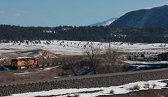 Northbound BNSF at Palmer Lake (Michael Karlik) Tags: winter mountain lake snow train colorado hill palmer front line coal range freight bnsf joint