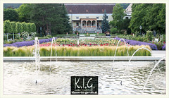 Rosarium Baden bei Wien, blick ueber die historischen parterres auf schloss Weikersdorf   2014-06 (Brigitte Rieser) Tags: park fountain austria pond jardin ornamental parc rosegarden niedersterreich rosengarten badenbeiwien fontne rosarium wasserspiel wasserbecken roseraie rosenpark schlossweikersheim doblhoffpark naturimgarten zierbecken