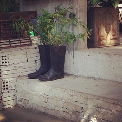 #DaNang #Vietnam #GumBoots #Boots #Flowers #Pot #Stairs #Local (Makaveli 8) Tags: square squareformat rise iphoneography instagramapp uploaded:by=instagram