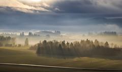 Bavarian countryside (ccr_358) Tags: morning trees winter light panorama mist fog clouds germany landscape bayern deutschland bavaria countryside scenery view postcard january inverno germania cartolina gennaio baviera 2016 swabia christmasholidays ostallgu hopferau ccr358