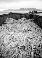 Icelandic Spaghetti ([maltchik]) Tags: blackandwhite bw mountain montagne mediumformat cord graffiti iceland fuji noiretblanc pasta nb spaghetti 6x45 kodaktmax400 islande argentique corde 2016 grundarfjrur moyenformat fujigs645w