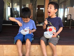 Oscar and Toby Enjoying Their First Strawberry Shortcake (Glenn H. Kelman) Tags: vacation hawaii may kauai princeville 2016 tobykelman oscarkelman