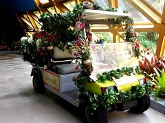 HTT!  FLOWER TRUCK (Visual Images1) Tags: flowers orlando epcot florida htt picmonkey happytruckthursday