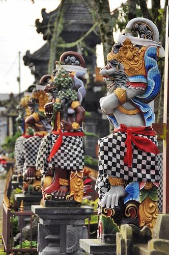 bali nord - indonesie 63