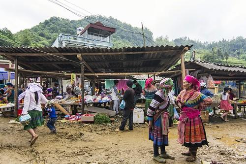 bac ha -vietnam 44