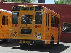 South Colonie CSD #80 (ThoseGuys119) Tags: ic bluebird schoolbus albanyny thomasbuilt southcoloniecentralschools