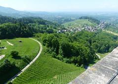 Ortenau-Wein-Wanderweg  - Blick vom Turm der Ruine Alt-Windeck (thobern1) Tags: ortenau wanderweg wein weinwanderweg badenbaden neusatz badenwrttemberg germany blackforest schwarzwald