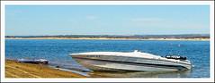 Cigarette 31' offshore boat for sale (CigaretteOffshoreboat1) Tags: cigarette offshore speedboat 31 cigaretteoffshoreboat deepv twin502 1990cigarette31bullet31199031cigarettebullet twin502mags bravo highperformancenoseconesssprops heavydutytriaxletrailer swimplatform portapotti americanmuscleboat cigaretteboatforsale