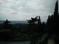 Piazzale Michelangelo (Aeryn ICamaleonte) Tags: italy rose florence italia tuscany firenze toscana michelangelo piazzale giardino