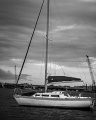 (zumponer) Tags: ocean sailboat canon boat blackwhite florida palmbeach canond30