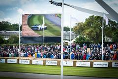 DSC_8399 (jonlarge) Tags: goodwood festival speed 2016 supercar run hill lotus 3 eleven british car manufacturer