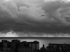 balcorama (fotomie2009) Tags: balcorama savona liguria italy italia clouds nuvole sea mare bn bw monochrome monotone