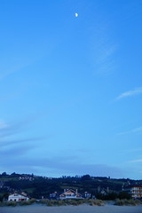 _DSC0877 (Parrasgo) Tags: espaa sunlight luz sol beach zoo mar spain seagull tiger iglesia playa rhino reflejo avestruz animales giraffe olas sunbeam vidriera cantabria norte horamagica
