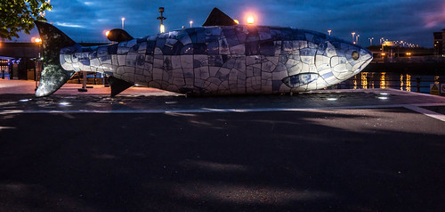THE BIG FISH NEAR THE LAGAN WEIR IN BELFAST [NIGHT VIEW] REF-104717