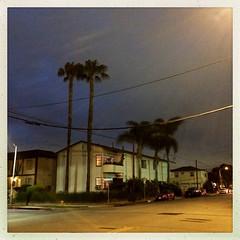 night moves (mackerel*Sky) Tags: street night santamonica vscofilm