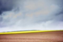Landschaft bei Edenkoben farbe 3 (rainerneumann831) Tags: landschaft linien edenkoben unschrfe