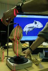 Scanning dem dry bones (samlemmers) Tags: 3d university durham laboratory scanning cranium phd anthropology mandrill primatology