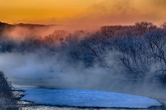 Blue Island (Ross Forsyth - tigerfastimagery) Tags: bridge blue mist nature japan sunrise japanese golden hokkaido colours natural blueisland redcrownedcranes otowabashi otowabashibridge