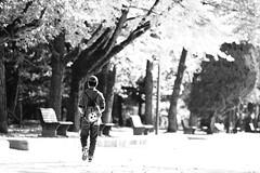 As it should be (Elios.k) Tags: park camera travel november autumn trees boy vacation people blackandwhite bw sun sunlight travelling monument monochrome leaves japan horizontal canon bench bag walking outdoors person photography one daylight student memorial asia alone peace dof bokeh path walk wwii young relaxing halo hiroshima depthoffield backpack sanyo shallow worldpeace atomicbomb abomb peacepark nuclearbomb disarmament honshu hiroshimaprefecture 2015 backgroundblur cultureday chugoku memorialpeacepark chgoku 5dmkii sany