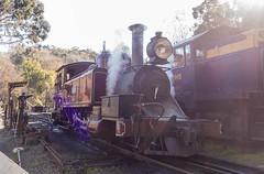 DSC04601.jpg (brianbronco) Tags: train railway australia preserved belgrave narrowguage na12a