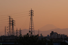 20160512-D7-DSC_0584.jpg (d3_plus) Tags: street sunset sea sky bicycle japan river cycling nikon scenery outdoor dusk daily telephoto ragnarok 夕陽 日本 tele streetphoto yokohama nikkor 夕日 海 空 散歩 横浜 dailyphoto 風景 70210 thesedays pottering 自転車 夕焼け 神奈川 景色 神奈川県 サイクリング 川 70210mm 日常 路上 70210mmf4 ストリート ニコン 望遠 70210mmf4af 702104 ポタリング d700 kanagawapref 屋外 nikond700 路上写真 aiafnikkor70210mmf4s 70210mmf4s