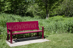 Sit and Watch the Grass Grow DSL8171 (iloleo) Tags: trees red ontario nature bench scenic grasses royalbotanicalgardens nikond7000