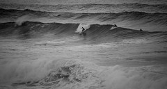 waves... (paul.wienerroither) Tags: waves surf surfing maui northshore hawaii hi travel blackandwhite blackwhite bw water ocean sea oceanlove photography canon sports view