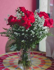 IMG_4183 (Josy'ta) Tags: rose rosas rosascolombianas flowers flores flor diadosnamorados love