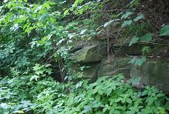 Sadno (nesihonsu) Tags: nature rock rocks poland polska geology geologia lowersilesia dolnolskie dolnylsk masywly przyrodapolska natureofpoland przedgrzesudeckie sudeticforeland