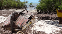 Picturesque Dhows and Mangroves, Vilanculos, Mozambique (dannymfoster) Tags: africa beach mangrove mozambique dhow mocambique vilankulo vilanculos