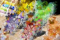 fluttering color (Pejasar) Tags: butterflies forsale watercolor effect art flutter color paint creations paintcreations