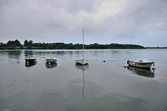 Stillness (Mystycat =^..^=) Tags: france brittany eau bretagne breizh bateau morbihan stillness reflets vannes voilier calme srnit gwened presquledeconleau