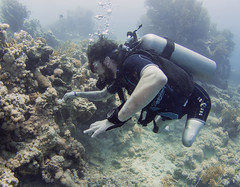 2505 AWARE (KnyazevDA) Tags: sea underwater wheelchair scuba diving disabled diver padi undersea handicapped amputee disability