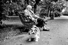 (Alan Schaller) Tags: street leica portrait white black london alan 35mm m and mm monochrom summilux asph fle schaller typ 246