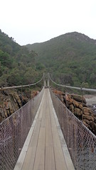 Storms River Mouth Suspension Bridge (Rckr88) Tags: africa travel bridge cliff green nature river southafrica outdoors suspension south bridges cliffs rivers greenery storms suspensionbridge gardenroute tsitsikamma easterncape rivermouth tsitsikammanationalpark stormsrivermouth