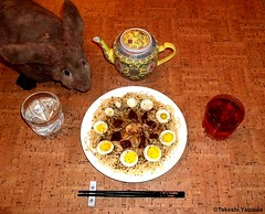 Seara (sea rabbit). Photograph by Dr. Takeshi Yamada. 20120421 004 Beef & Egg Spaghetti. Black Tea. Salt Water (diningwithsearabbits02) Tags: food ny newyork sexy celebrity art hat fashion animal brooklyn painting asian coneyisland japanese star costume tv google king artist dragon god cosplay manhattan wildlife famous gothic goth performance pop taxidermy cnn tuxedo bikini tophat unitednations playboy entertainer takeshi samurai genius mermaid amc johnnydepp mardigras salvadordali unicorn billclinton billgates aol vangogh curiosities sideshow jeffkoons globalwarming takashimurakami pablopicasso steampunk yamada damienhirst cryptozoology freakshow barackobama seara immortalized takeshiyamada museumofworldwonders roguetaxidermy searabbit ladygaga climategate minnesotaassociationofroguetaxidermists
