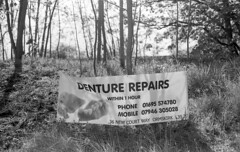 Untitled (the underlord) Tags: street slr repair signage roadside selfdeveloped dentures olympusom2n kodakd76 zuiko50mmf18 kodak5222 eastmankodakdoublex 9minutesatstock