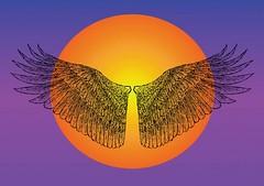 golden wings (movieboke) Tags: wings icarus batwings fairywings wingvector wingseps
