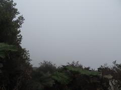 """Volcan Poas: quelle chance, le cratère est dans le brouillard total ! <a style=""""margin-left:10px; font-size:0.8em;"""" href=""""http://www.flickr.com/photos/127723101@N04/26253444434/"""" target=""""_blank"""">@flickr</a>"""