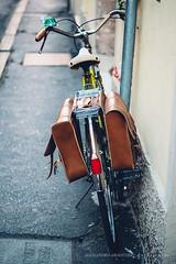 Ferrara (Alessandro Argentieri) Tags: travel italy italia ferrara bycicle bicicletta