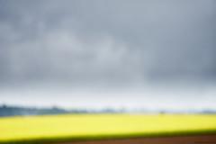 Landschaft bei Edenkoben farbe (rainerneumann831) Tags: landschaft linien edenkoben unschrfe