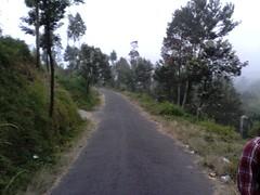 "Pengembaraan Sakuntala ank 26 Merbabu & Merapi 2014 • <a style=""font-size:0.8em;"" href=""http://www.flickr.com/photos/24767572@N00/26556920784/"" target=""_blank"">View on Flickr</a>"