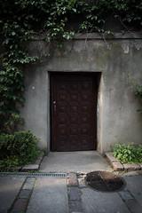 Door (Tadas Telksnys) Tags: door plants church architecture entrance medieval historical desaturated oldtown vignette lithuania kaunas lietuva samyang16mmf20edasumccs