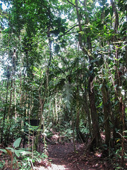 "Parc National Arenal <a style=""margin-left:10px; font-size:0.8em;"" href=""http://www.flickr.com/photos/127723101@N04/26832818071/"" target=""_blank"">@flickr</a>"