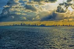 Panoramic view of the skyline of Miami, Florida U.S.A., The Magic City (Jorge Marco Molina) Tags: downtownmiami miami urban southerncity city citycityscape panoramicphoto sunshinestate miamidadecounty magiccity atlanticocean