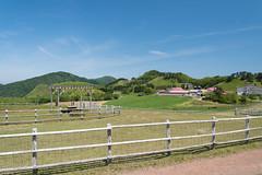 12Ikari Field Farm (anglo10) Tags: field japan kyoto